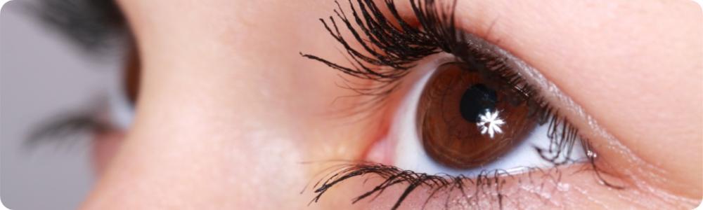 Wakker op Zondag: Jouw oog wil ook wat!