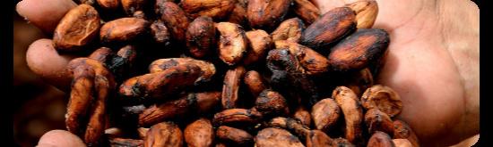 Kirtan Cacao ceremony